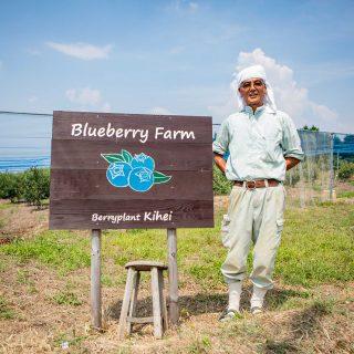 Izumi Fureai Nou No Sato(Agricultural Experience Exchange Facilities)