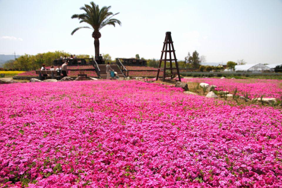 이즈미 리사이클환경공원