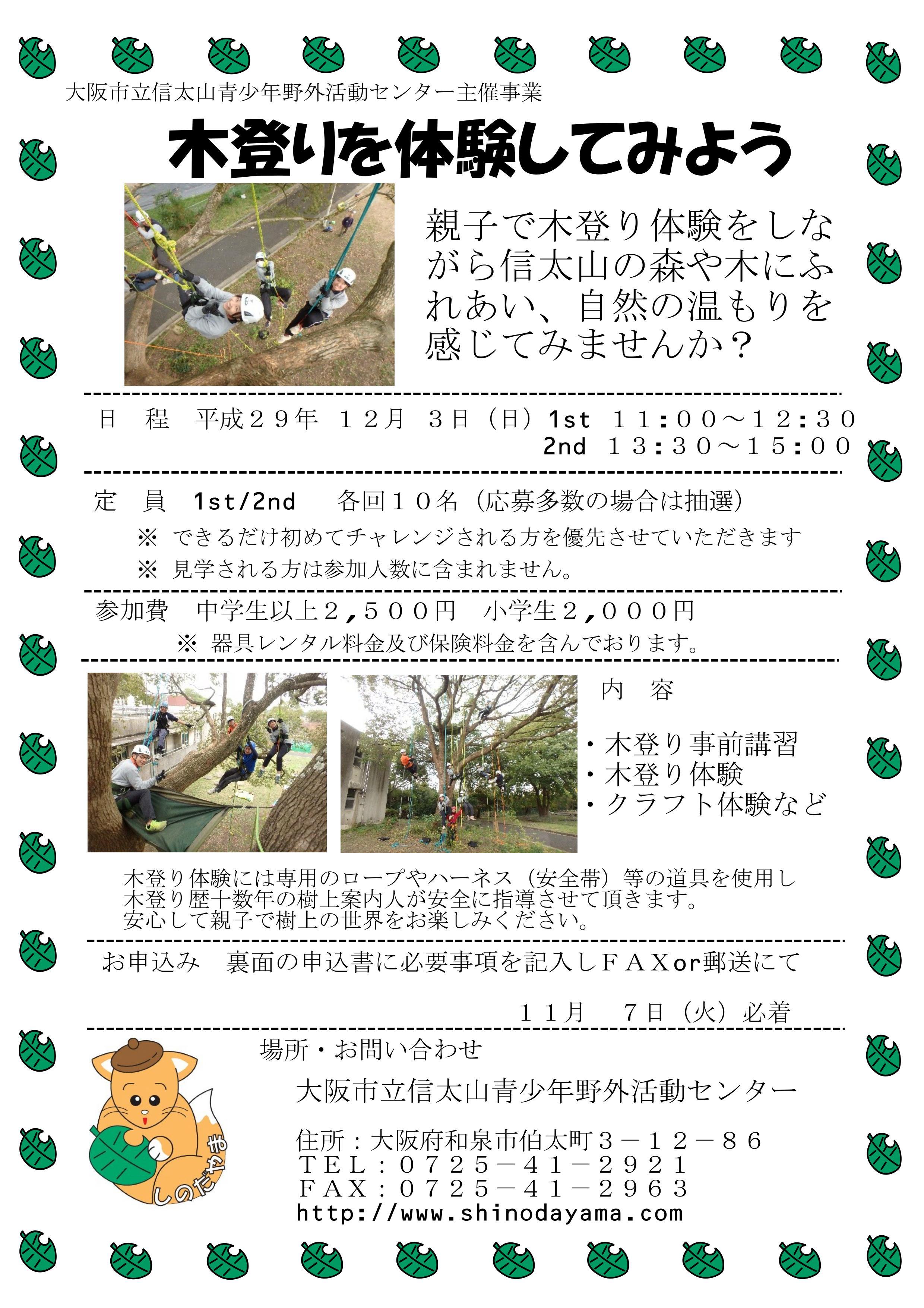 【12月3日(日)開催!】木登りを体験してみよう!!