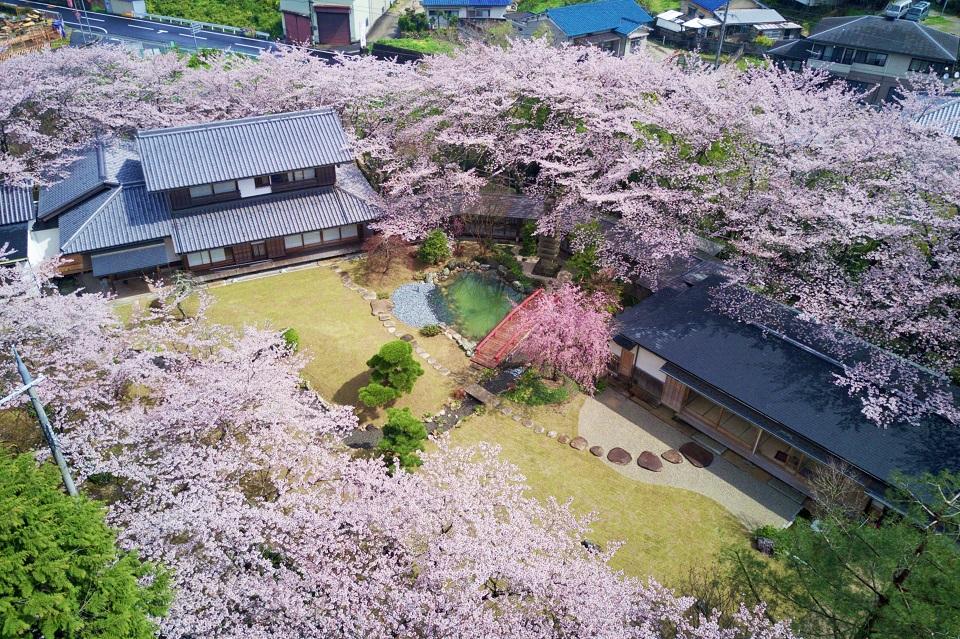 Oukai Villa Izumi 櫻泉会館