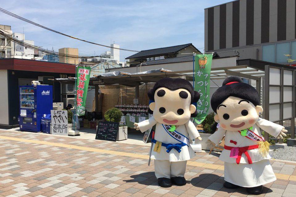 平成29年度 和泉市×かつらぎ町 1日限りの共同観光案内所開催!