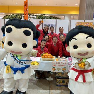 和泉みかんは大阪府で1位の出荷量なんだよ!「甘さ」と「すっぱさ」のバランスが絶妙で、「コク」のあるみかんとして人気なんだ!