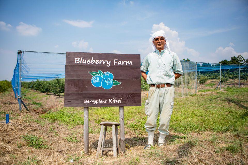 和泉農業體驗交流鄉里